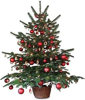 Hugh Smith From The Ileach Newspaper Takes A Look At The History Of The Holiday Season In This First Part Hugh Writes About Christmas In Scotland